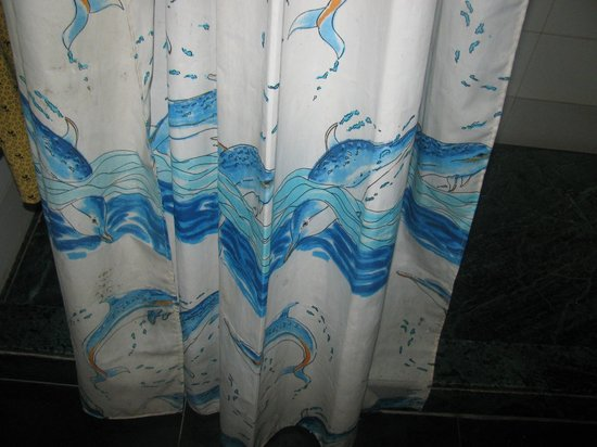 Banon Resorts Manali: dirty curtains in the bathroom