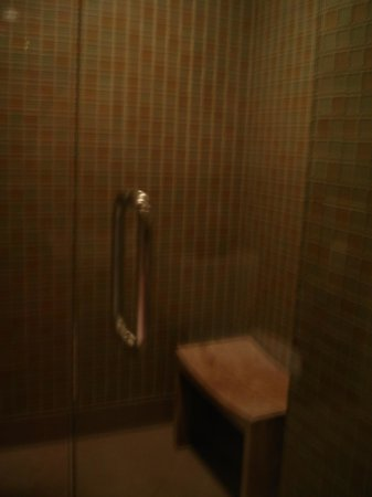 Hotel Adagio, Autograph Collection: Penthouse Shower & Seat