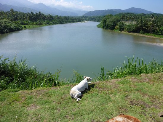 Finca Barlovento Cabana & Maloka: river