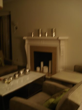 Hotel Adagio, Autograph Collection: Penthouse Fireplace