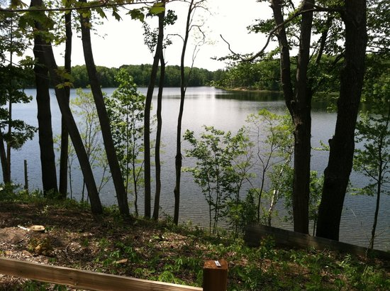 Sleeping Bear Resort: View from the cabins