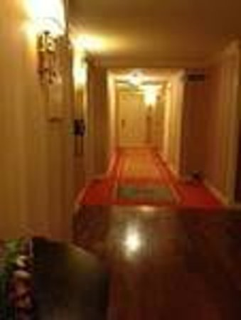 Renaissance Charleston Historic District Hotel: Bright carpet in hallway