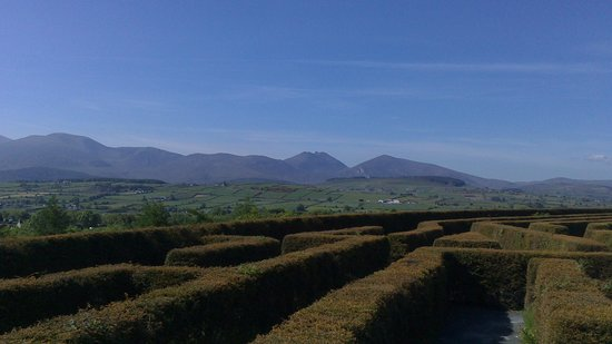 Castlewellan Forest Park: view from the peace maze