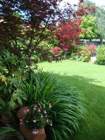 Bed & Breakfast Santa Lucia: Il giardino