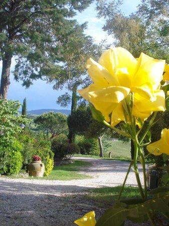 Bagno Santo Hotel: giardino