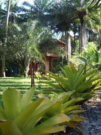 Pousada Chales Casa do Sol: Jardim