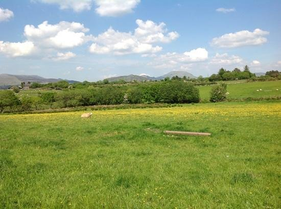 Rhos Country Cottages: The beautiful countryside around Hendre.
