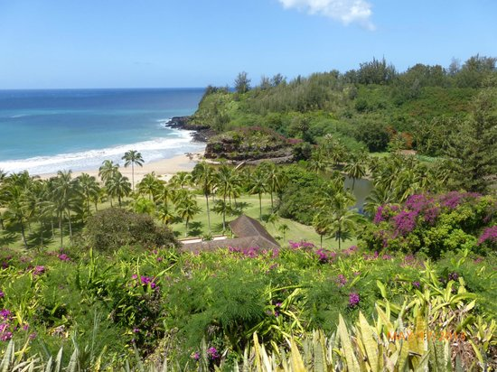 View of the lawai river picture of allerton garden - National tropical botanical garden ...