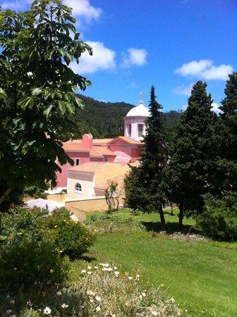 Penha Longa Resort: A view to the garden