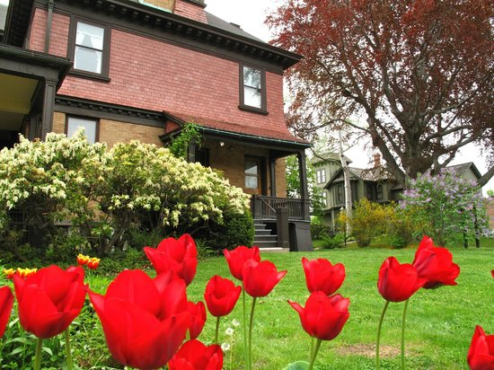 Hotchkiss-Fyler House Museum: Tulips in bloom everywhere