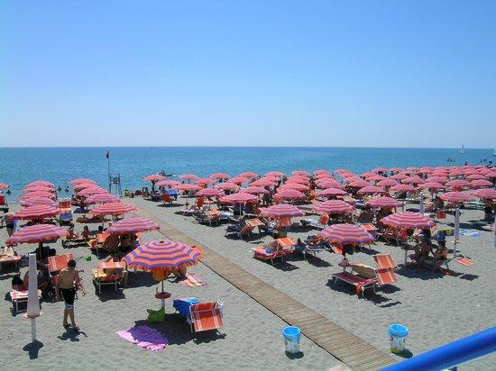 Policoro, Italia: Dettoglio della spiaggia con gli ombrelloni
