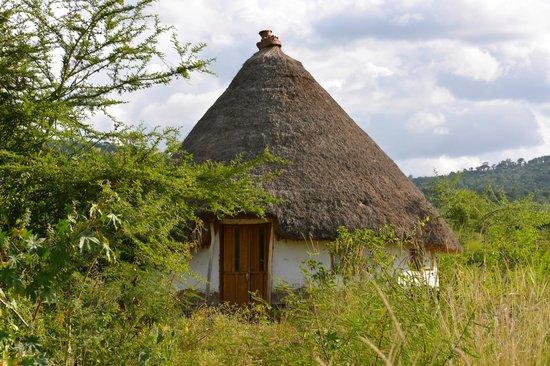 Strawberry Fields Eco-Lodge: Lodge Accommodation