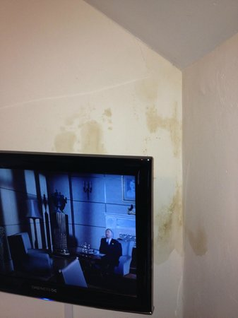 Old Court Hotel: More mould