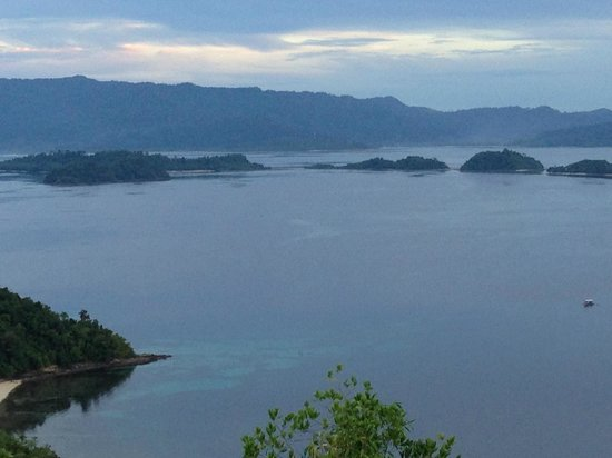 Blue Cove Island Resort: The view from the top of island