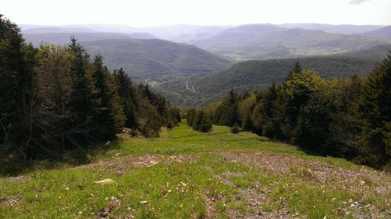 Morning Glory Inn: View from Snowshoe Mountain