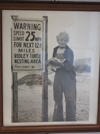 "Sea Turtle, Inc.: Founder, ""Turtle Lady of South Padre Island"" - Ila Fox Loetscher"