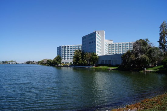 Sofitel San Francisco Bay: View of the hotel from the side of the lagoon - just don't swim in it!