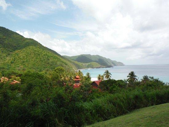 Renaissance St. Croix Carambola Beach Resort & Spa: Overview above resort