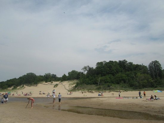 Indiana Dunes State Park: Beach