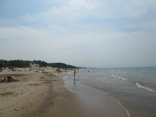 Indiana Dunes State Park: South View of beach
