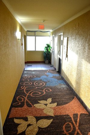 """Clarion Inn : Remodeling is """"in the process"""" with new carpets"""