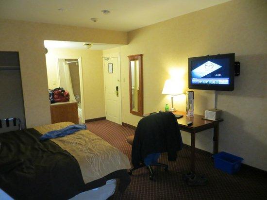 多倫多機場舒適酒店照片