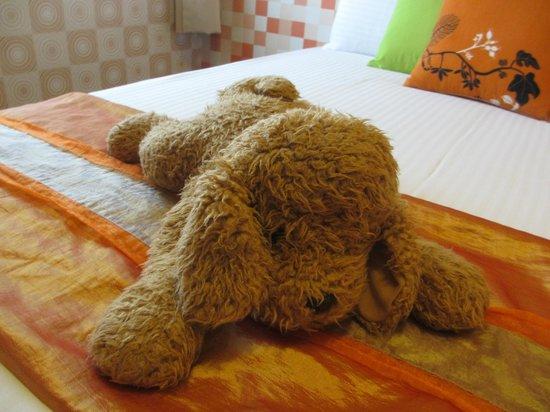 Hualien Sunrise Hostel: 床上躺着的小狗