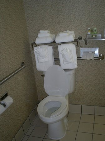 Country Inn & Suites By Carlson, Cortland: handicap bathroom- plenty of towels