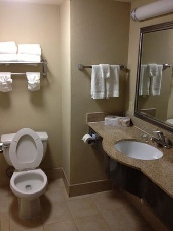 Country Inn & Suites By Carlson, Savannah Airport: Add a caption