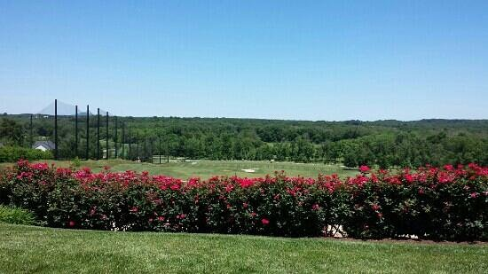 Lansdowne Resort and Spa: beautiful view
