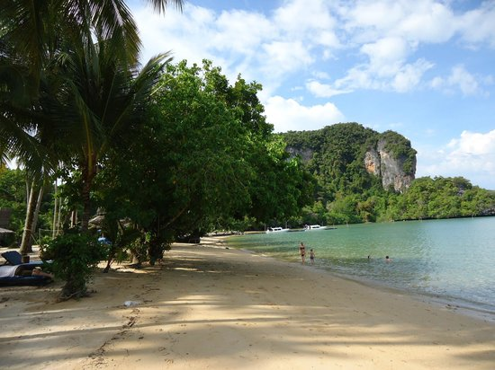 พาราไดซ์ เกาะยาว: Beach at Paradise Koh Yao Noi