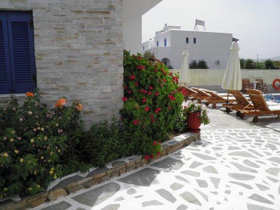 Hotel Katerina: Hotel grounds