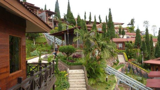 Bromo Cottages Hotel: Dans la verdure