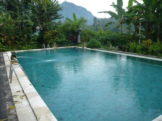 Subak Tabola Villa: La piscine