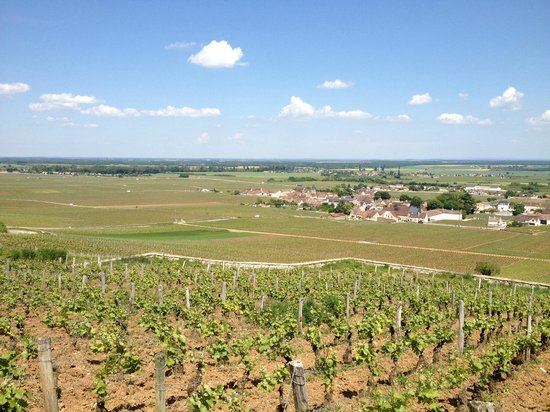 Le Richebourg : Lovely views from the hills behind the hotel