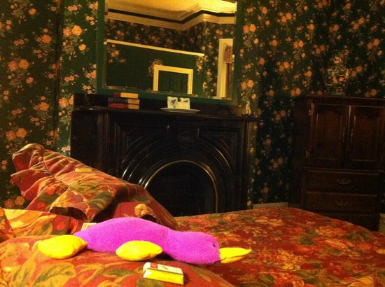 Earle of Leinster : Platypus Enjoying his Stay