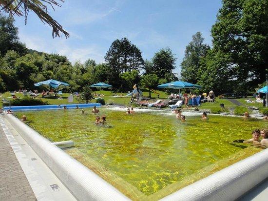 Alpamare: Thermal Iodine Brine Pool - No Kids Allowed