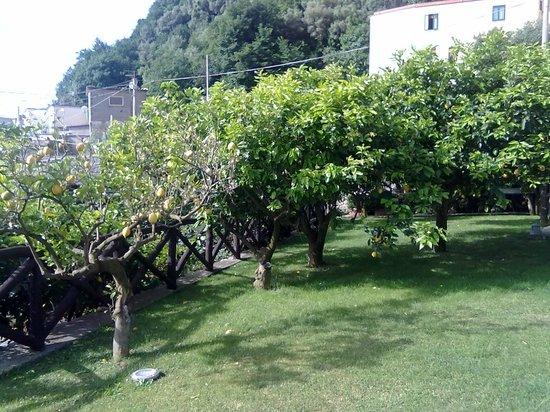 Casale Villarena : casale picture 2