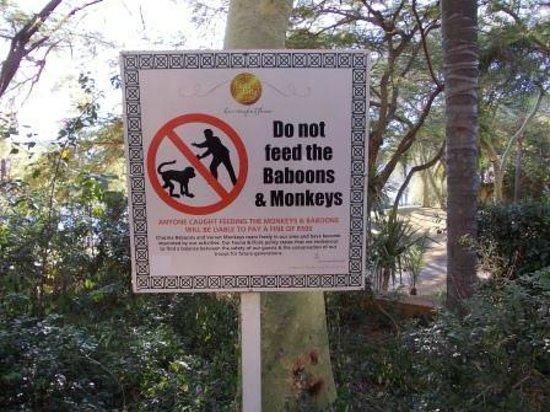 Soho Hotel: Warning sign.