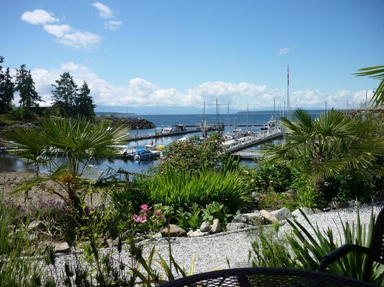 Nancy's Bakery | Lund BC : Amazing view from the outdoor seating