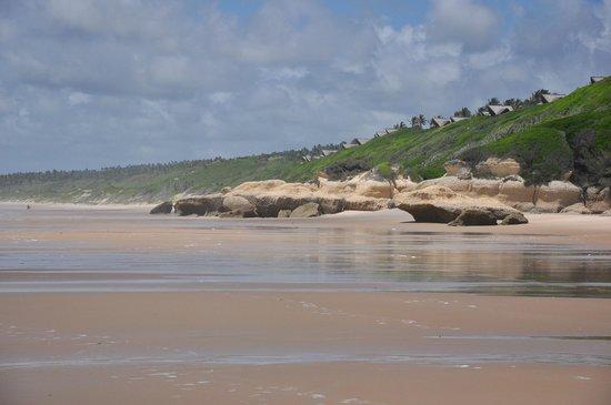 Massinga Beach Lodge : lodge view from beach