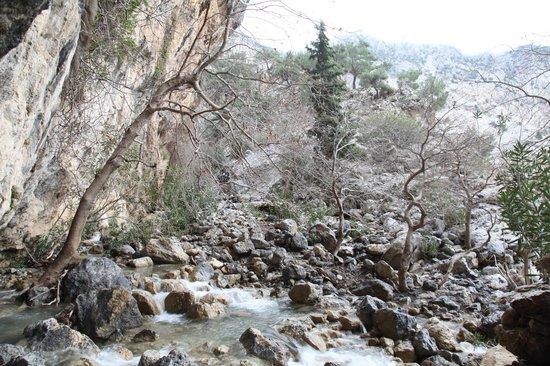 Eleonas : gorge of zaros