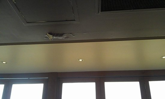 Matilda Bay Restaurant: Leaking roof not a good look