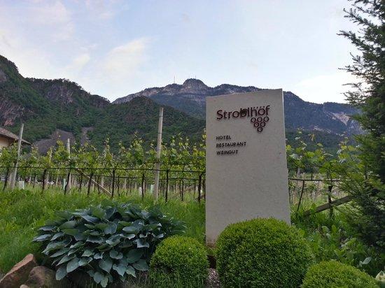 Hotel Weingut Stroblhof: L'ingresso alla tenuta