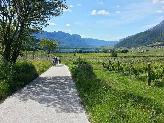 Hotel Weingut Stroblhof: In bici verso il Lago di Caldaro