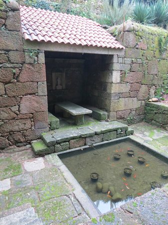 Convento dos Capuchos: Fonte Sto. António com peixes