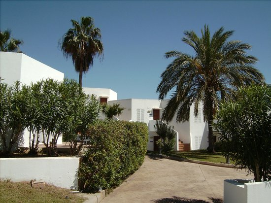 Aparthotel Ferrera Blanca : Holtel grounds