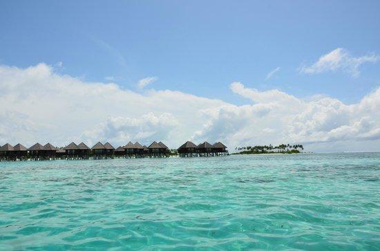 Olhuveli Beach & Spa Maldives : Nice seen from the lagoon