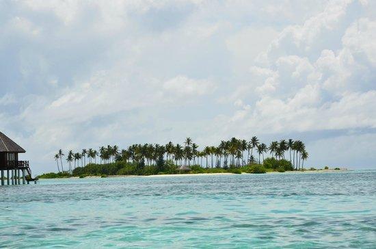 Olhuveli Beach Spa Maldives Another Island Near The Resort