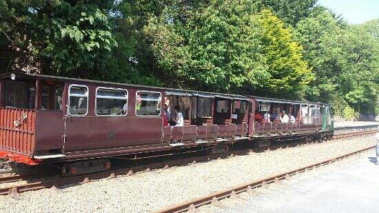 Waterford & Suir Valley Railway: The train